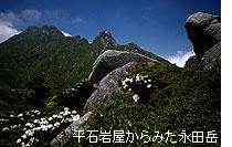 ga015_1.jpg