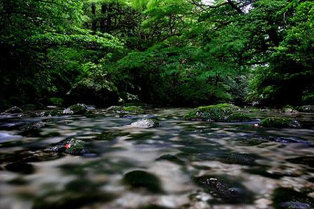 21)淀川の清流(尾之間歩道)