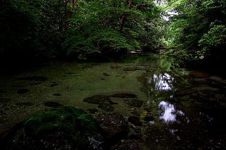 22)淀川の清流2(尾之間歩道)