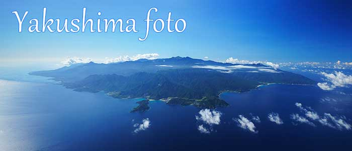 屋久島写真レンタル